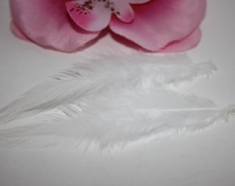 Set of 2 Rooster feathers colored white 9-15cm