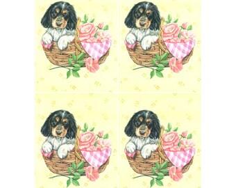 Puppy dog in basket-DC068