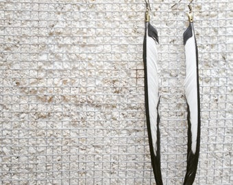 Wild Medium Jay Feathers Earrings (Bicolour/Pair)