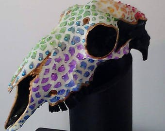Aniwaniwa - painted sheep skull
