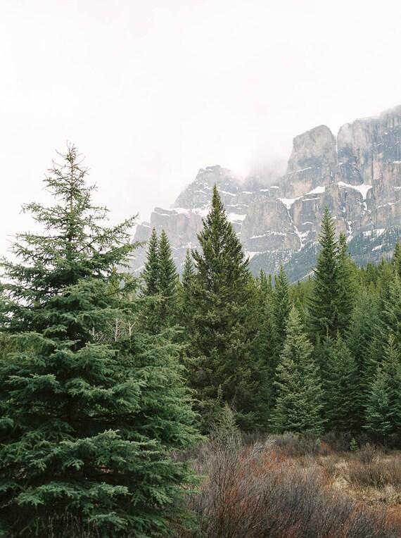 Castle Cliffs, Banff