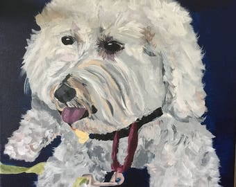 Custom (possibly funky) Pet Portraits