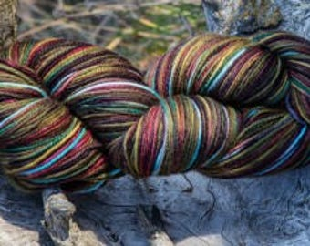 Denali Autumn - Part of the Alaskan Color way, hand painted yarns inspired by the magic of Alaska