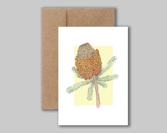 Banksia Burdetti, australian native watercolour illustration art print card. Blank greeting, birthday, thank you card.
