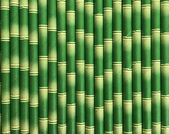 Green Bamboo Paper Straws (Pack of 25)