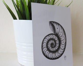 Spiral Shell Print, A6