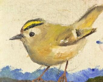 Bird Art Print Goldcrest Oil Painting study (Giclée Print)