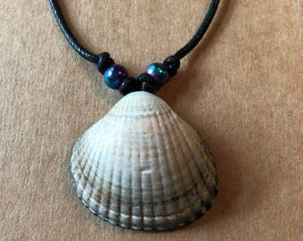 Shell Necklace (C)