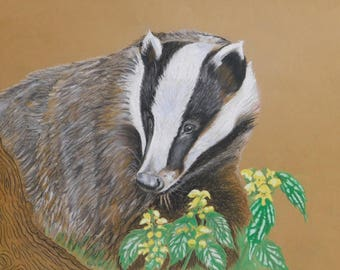 Badger with Yellow Flowers, print of my original pastel work