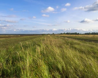 Photography Russian field