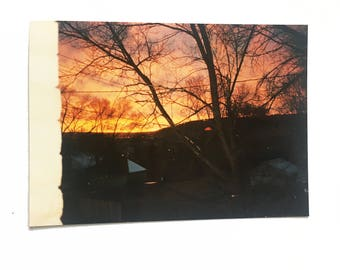 rooftops: found photo