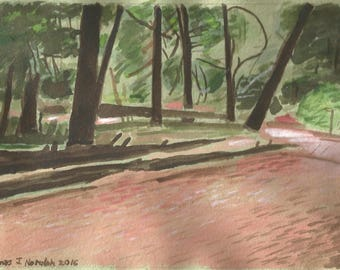 Cook Forest Trail watercolor on handmade paper