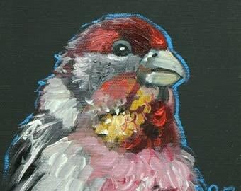 Bird painting 285 6x6 inch portrait original bird oil painting by Roz