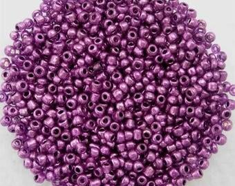 RICH PURPLE METALLIC Glass Seed Beads 11/0 Size 10 Grams