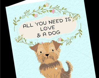 Dog Card, Yorkie Dog Greeting Card-Just Because Card