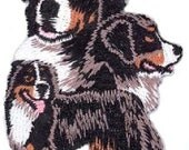 Embroidered BERNESE MOUNTAIN DOG Dog Breed Iron-on/Sew on Patch Badge Applique