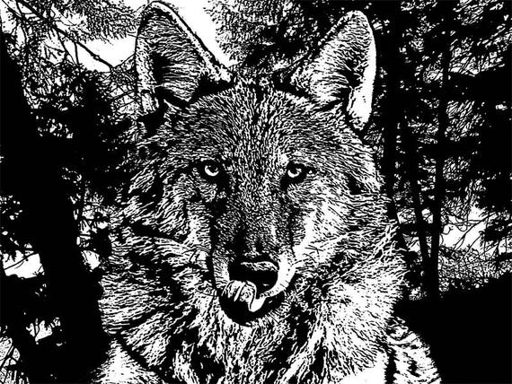 hungry wolf licking his teeth forest trees printable wall art black and white abstract digital image download graphics png jpg ink style