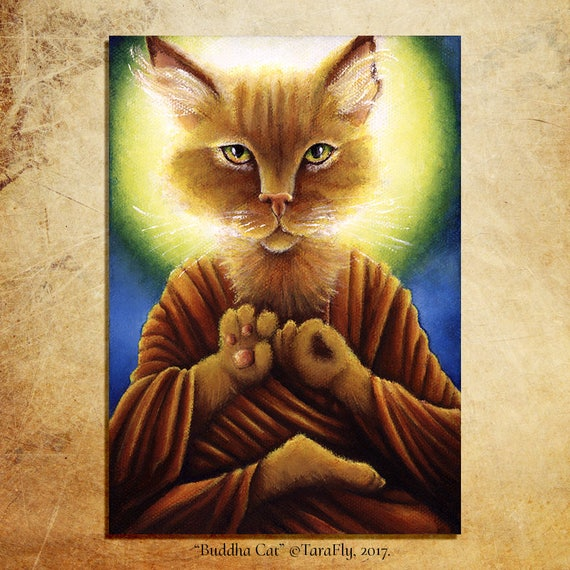Buddha Cat 5x7 Fine Art Print