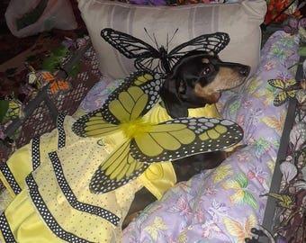 Monarch  Butterfly  Dress 5 colors