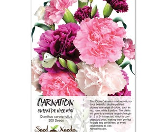 Carnation Seeds, Enfant De Nice Mixture (Dianthus caryophyllus) Open Pollinated Seeds by Seed Needs
