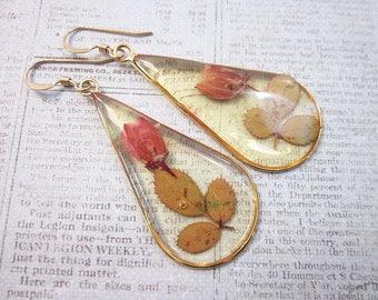 Pink & Green Flower Earrings -- Real Flower Earrings -- Teardrop Flower Earrings -- Pressed Flower Accessories -- Real Rose Earrings -- Rose