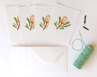 Burdettii Banksia Illustrated 4 Pack - A6 Postcards With Envelopes