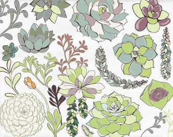 Succulent Flower Illustrations Clip Art, Hens & Chicks Floral ClipArt, Flower ClipArt, Commercial Use Graphics