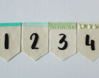 Baby Month Banners (minty bundle, cream background)
