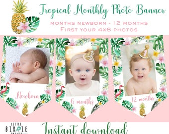 Tropical Monthly photo banner Tropical first birthday Flamingo monthly photo banner Pineapple first birthday Luau Monthly photo banner Palm