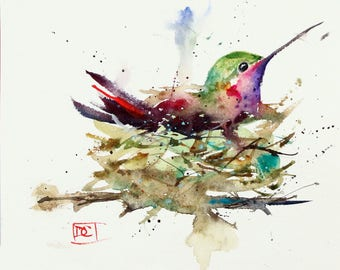 HUMMINGBIRD in NEST, Watercolor Print by Dean Crouser