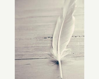 Still Life Photography: Shades of White Fine Art Photography White Feather Photo Grey Black and White Vertical Print