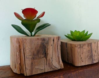 Succulent Plant Holders Set of 2, Reclaimed Wood Plant Holders, Succulent Planter, Rustic Plant Holder, Air Plant Holder