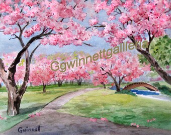 Brooklyn Botanical Gardens   Cherry Blossoms