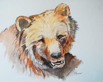 ours brun, animaux, nature, dessin encre et craie, art