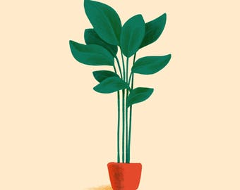 Tropical Potted Plant Illustration Print