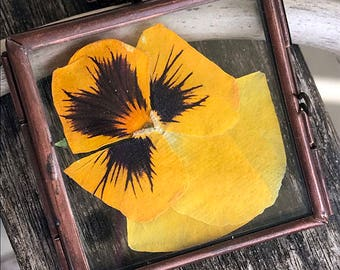 Pressed Pansy Glass Locket Necklace / Square Glass Locket Necklace / Pressed Golden Yellow Pansy / Unique Statement Necklace
