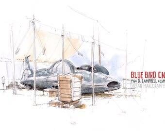 Bluebird CN7 - Original A3 Pencil and Watercolour Sketch