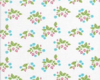 Sale Fabric - Small Floral Fabric - Gooseberry Fabric - Aqua Small Floral - Moda Fabric - Lella Boutique