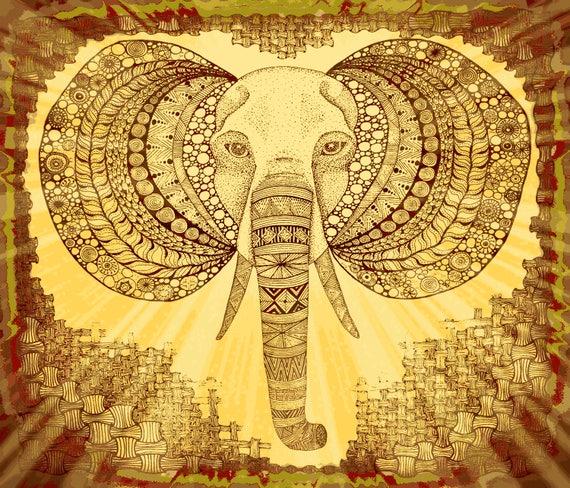 Elephant FQ Kalahari