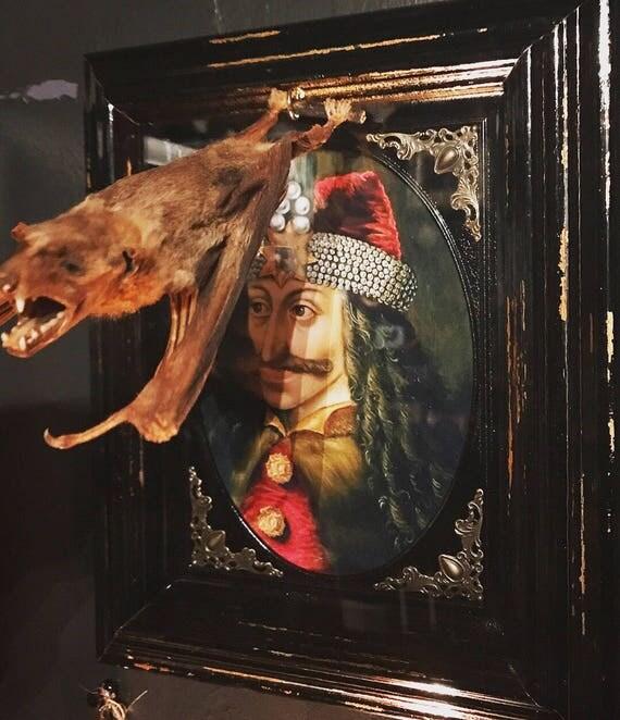 Hanging Mummified Bat with Framed Vlad Print