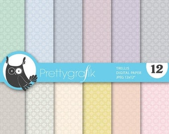 80% OFF SALE trellis digital paper, commercial use, scrapbook papers, background - PS639