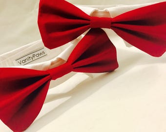 Custom Made Wedding White Tuxedo Collar with Coloured Bowtie