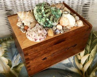 Seashell Topped Cigar Box