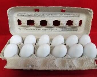 Dozen 12 twelve Wooden Chicken Faux Fake Eggs Kitchen Decor white-Blank Wooden Eggs carton
