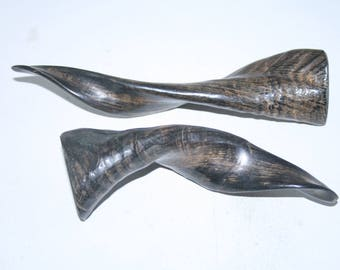 2 Goat horns ....  e2a81  ... Natural colored polished cow horns.,.....