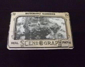 Vintage real Photographs Scene O Graph butchart gardens Canada mid-century 1950s b&w