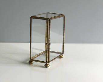 Glass and Brass Terrarium Box / Display Box