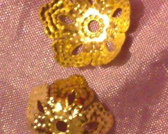 Pearls Golden calottes 14 * 14mm set of 2