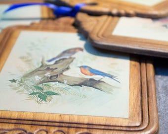 Bird Decor, Set of 4 Bird Prints, Vintage Bird Wall Art, Wood Wall Art, Vintage Bird Wall Art,