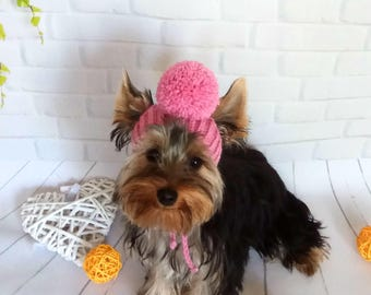 small dog hat dog hats knit dog hat knitted dog hat warm dog hat pet hat puppy hat knit dog hat yorkie clothes hats for dogs